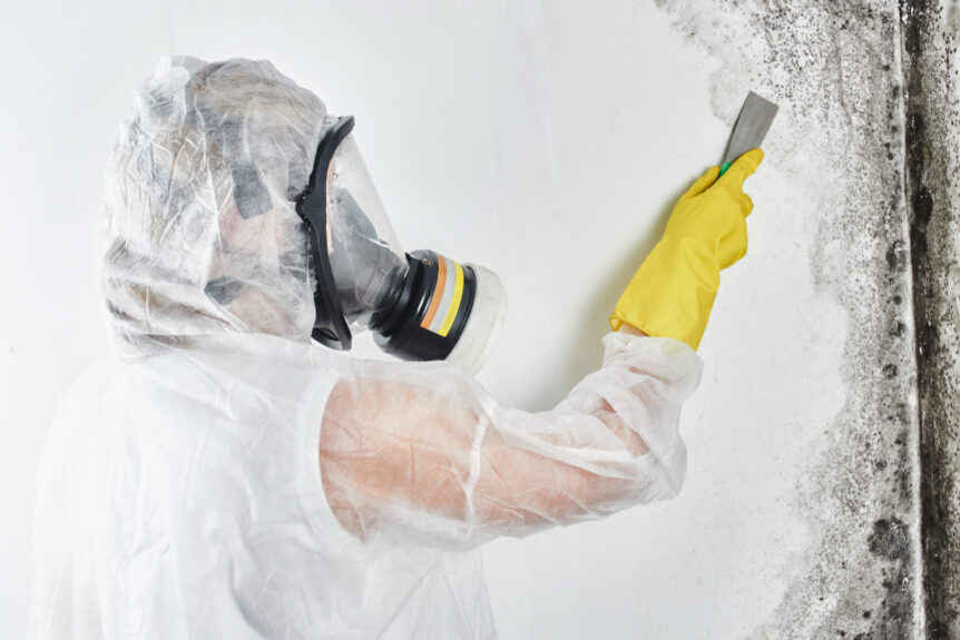 professional dressed in ppe to remove mold on wall